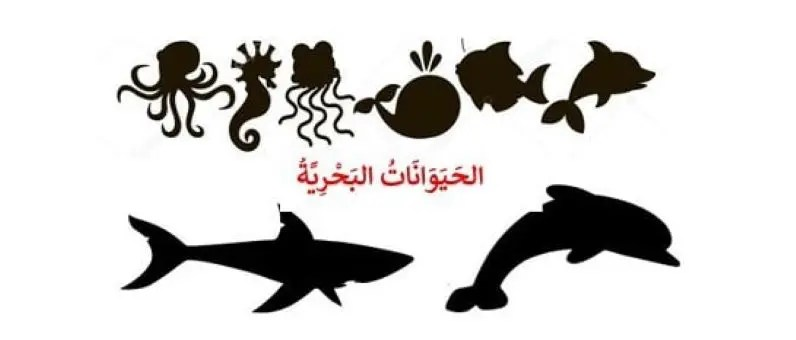 poisson en arabe