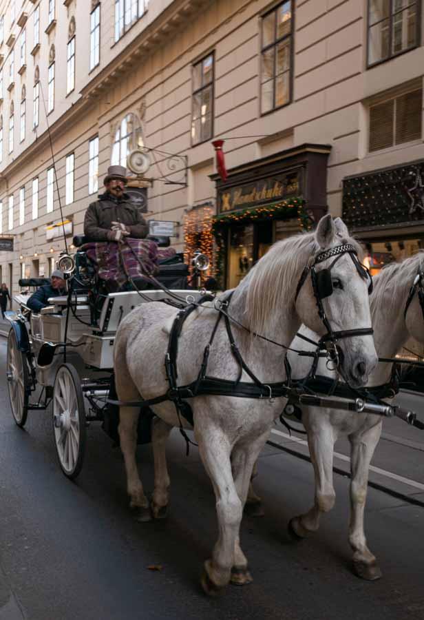 Fiacre Vienne