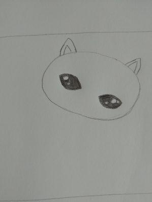 Je colorie les yeux en noir (sauf les cercles)