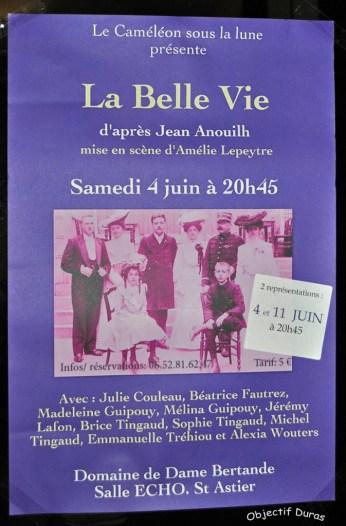 Caméléon DSC_0046 rs (46)