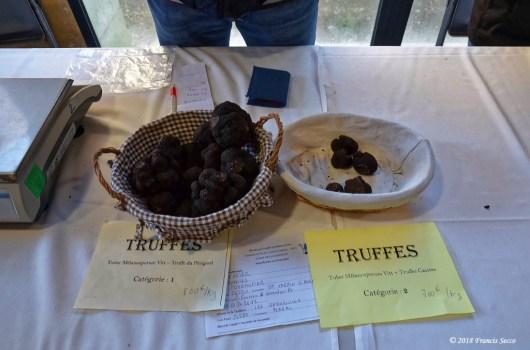 Truffe St Alvére (17)_DxO_GFDXO