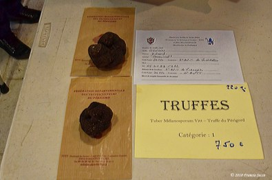 Truffe St Alvére (21)_DxO_GFDXO