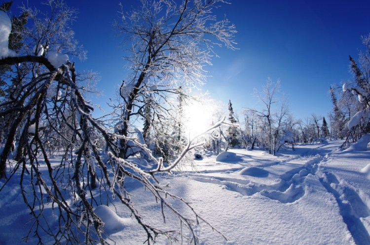 snowmobile&snowshoeing4