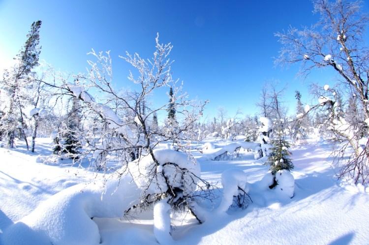 snowmobile&snowshoeing8