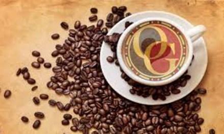 Organo Gold, un café qui vaut de l'or? Mon avis corsé