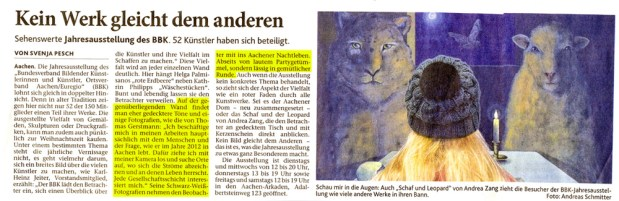 Zeitungsartikel Aachener Zeitung 10. Dezember 2012