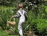 child-garden-web