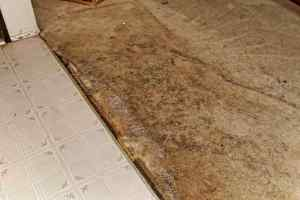 Entry Carpet Damage