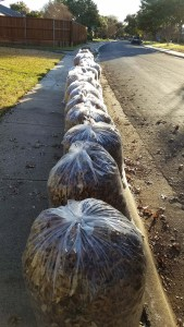 34 leaf bags and a big box - and room to walk