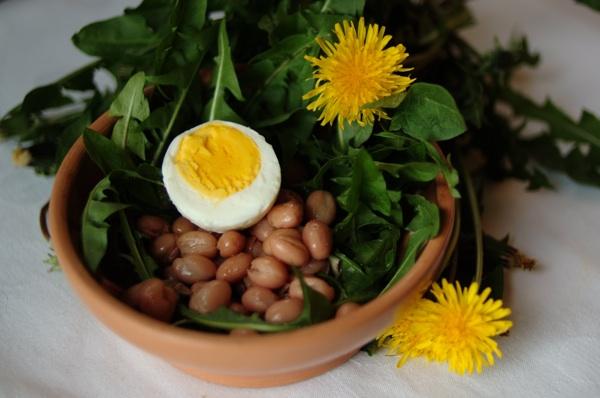 Salata od graha i mladoga radiča (maslačka) (Snimila Marina Filipović Marinshe / Acumen)