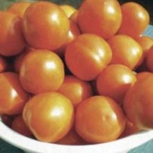 Rajčica (Izvor: Mićo Brkanović)