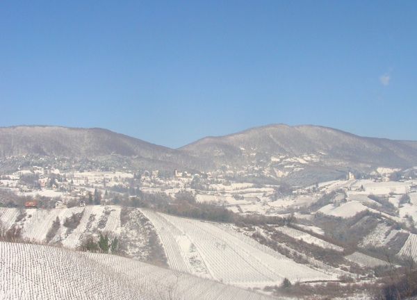 Vinska cesta zanimljivo je odredište u sva godišnja doba (Fotografija Turistička zajednica grada Jastrebarskog)