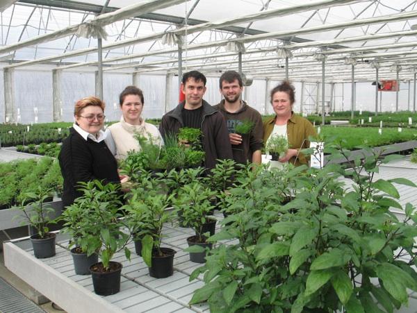 U plasteniku (slijeva nadesno) Božica Brkan, Katarina Kencek, Robert Slezak, Filip i Nevenka Kencek (Fotografija Oblizeki)