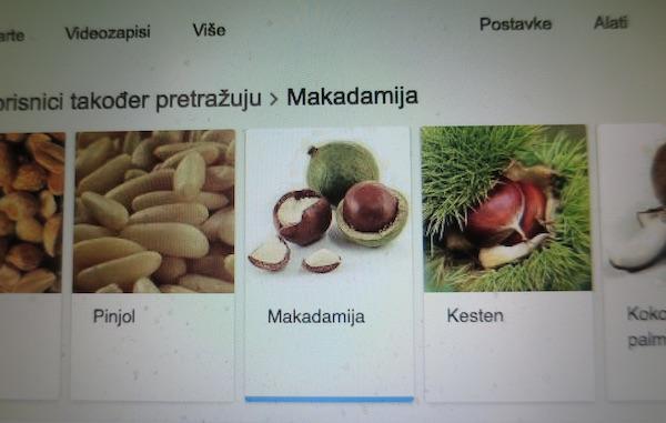 Makadamijjin plod u internetskom nizu srodnika (Presnimljeno Oblizeki)