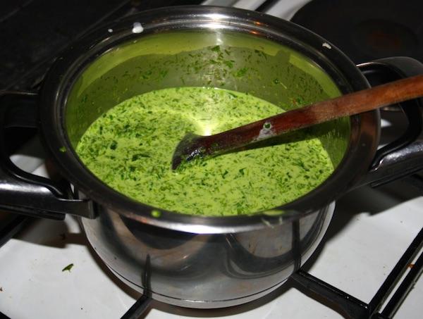 Divlja krem juha od srijemuša (Fotografija Franjo Jagatić / Oblizeki)