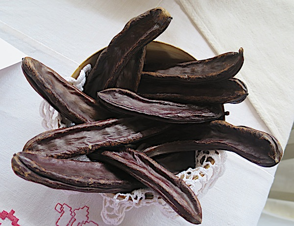Rogačeve mahune (Fotografija Božica Brkan / Oblizeki)