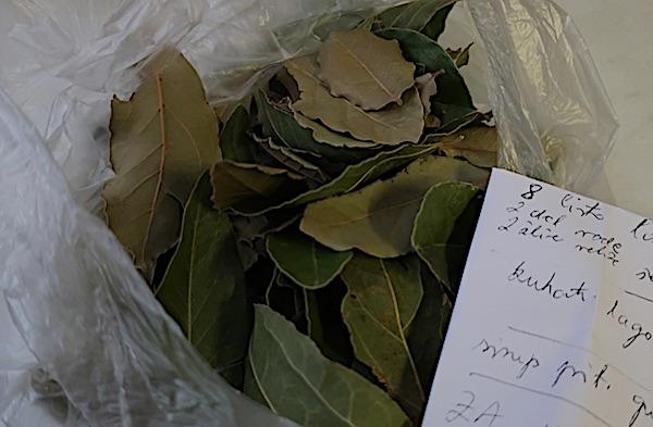 Ljekoviti suvenir: lovorovo lišće (Fotografija Miljenko Brezak / Oblizeki)