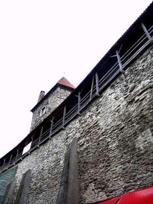 Detalle de la muralla