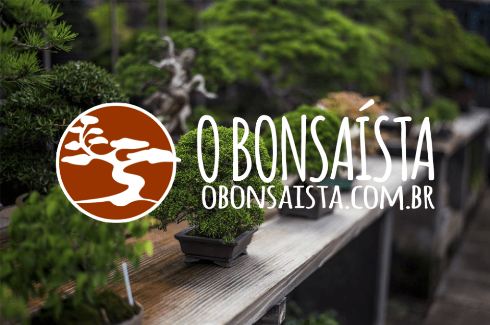 O Bonsaísta. Guia do Bonsai