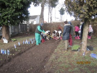 Preparando o terreo