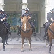 mounted  police patrol SD