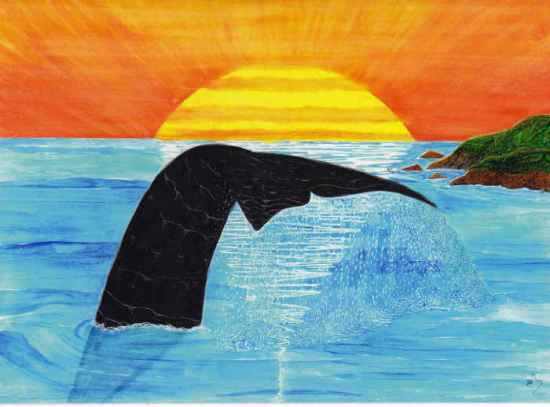 Whale Tale-sm