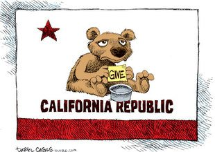 election poor Calif bear cartoon