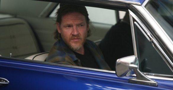 Terriers Hank in car