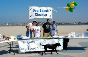 dog-beach-dog-wash-friends