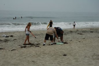 beach cleanup