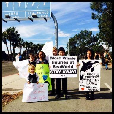 Seaworld protest 1-19-14 03
