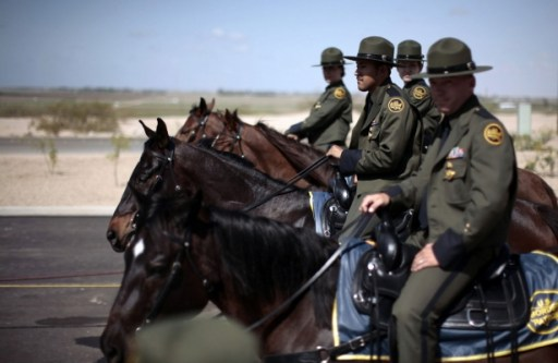 Border Patrol horses
