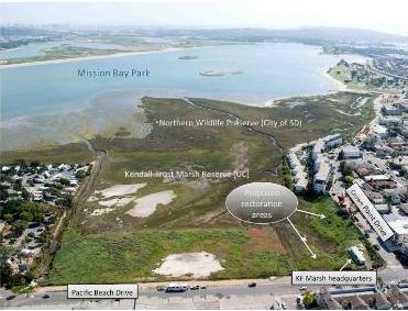 Mission Bay Restore Proj OvrVu