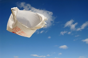 plastic bag wind