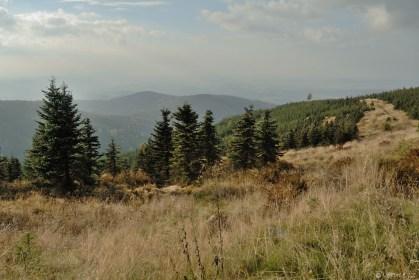 Jizerské hory - ze Smrku na Streitův obrázek