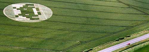 crop invader