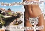IMG_cartepostale
