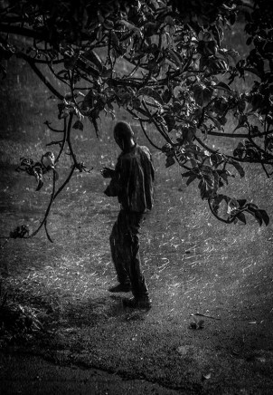 B&W photograph of man under tree in rain