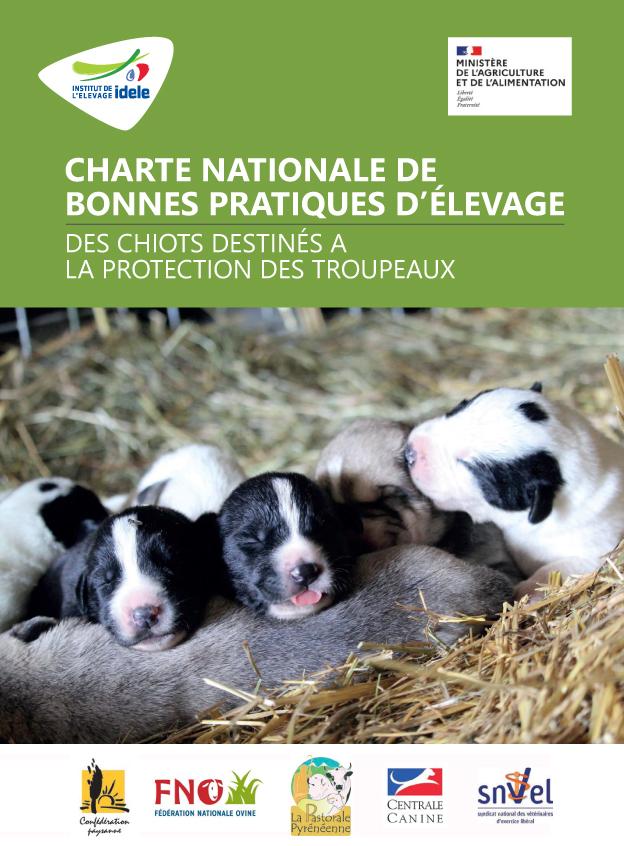 CHARTE NATIONALE DE BONNES PRATIQUES D'ÉLEVAGE DES CHIOTS DESTINÉS A LA PROTECTION DES TROUPEAUX