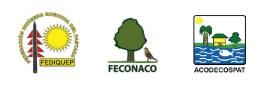 logos federaciones