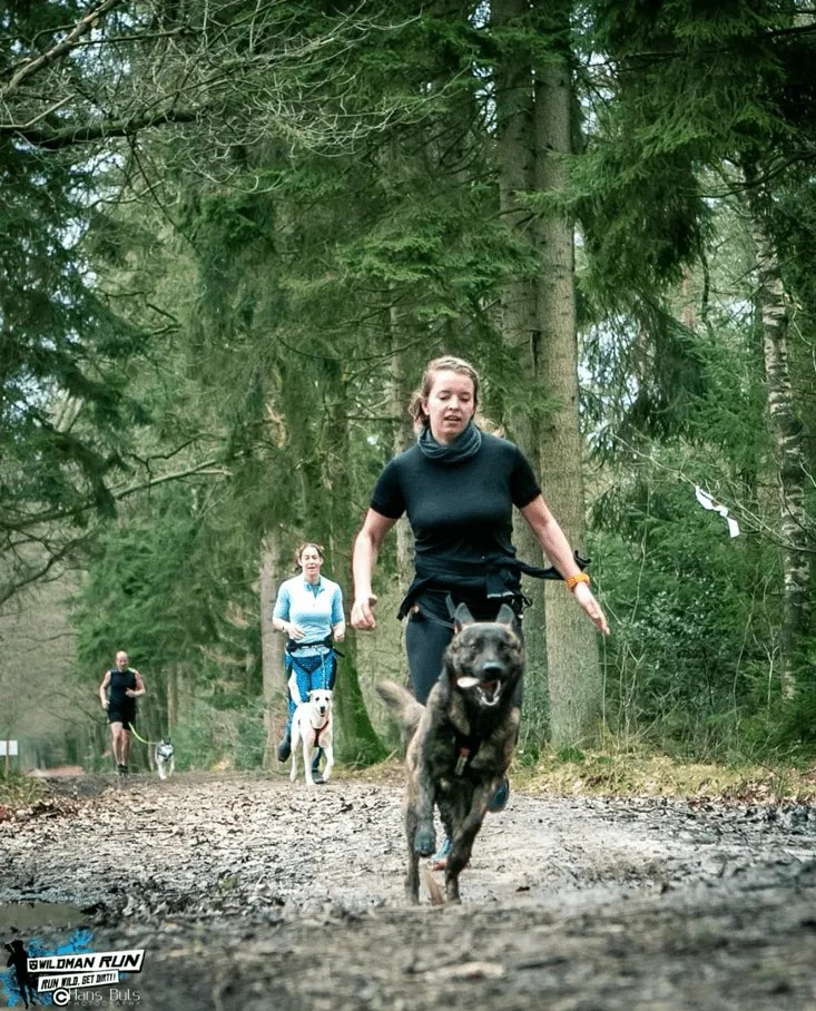 review Wildmanrun trail sleen