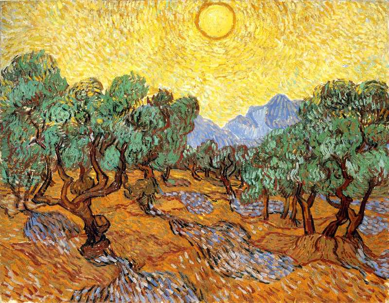 Olive Trees with Yellow Sky and Sun 1889 Van Gogh