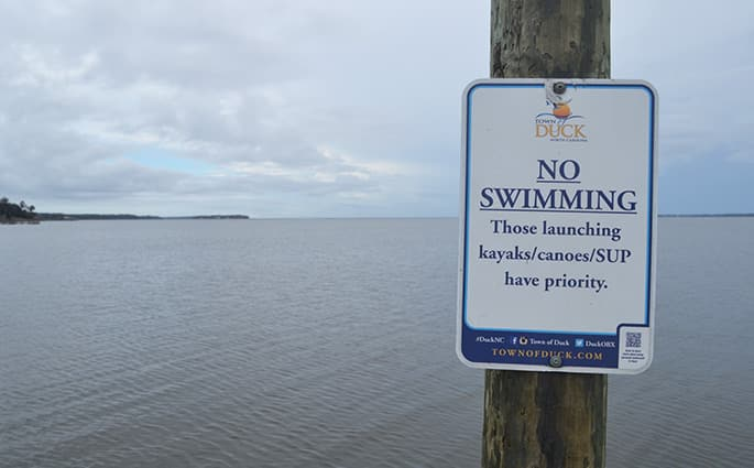 duck-sound-access-swimming