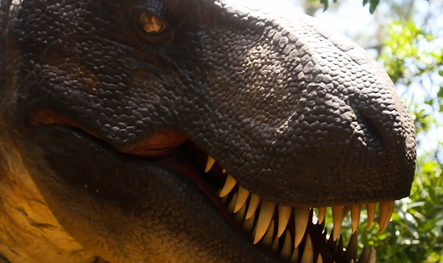 NC Aquarium Tyrannosaurus Trek on Roanoke Island, June 19, 2015 (photo by OBXentertainment.com)