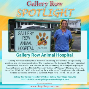SPOTLIGHT - Gallery Row Animal Hospital