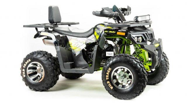 Quad bike promax wild 300 pro