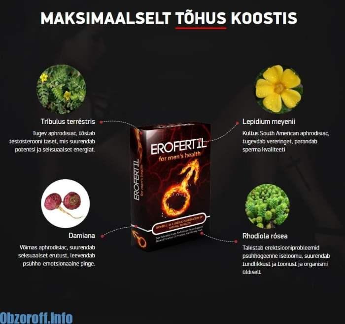 KOOSTIS Erofertil