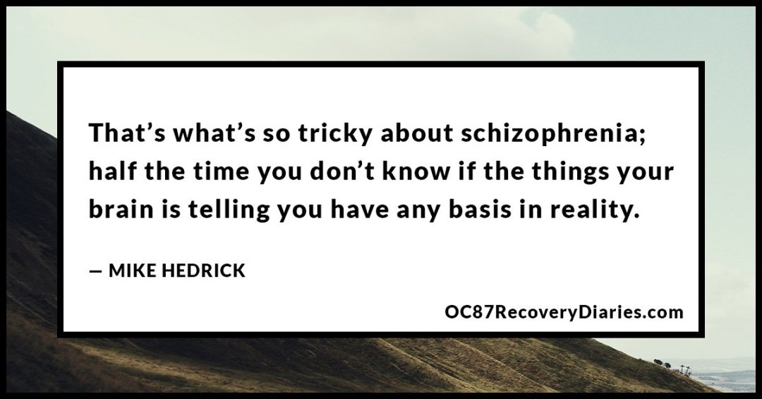 2b-mike-hedrick-grandiosity-schizophrenia