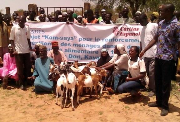 60 ménages du Bam, bénéficiaires de chèvres naisseurs et d'un appui à la construction d'abris