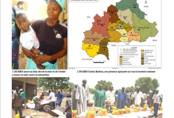 Rapport Annuel Consolidé 2012 de l'OCADES Caritas Burkina